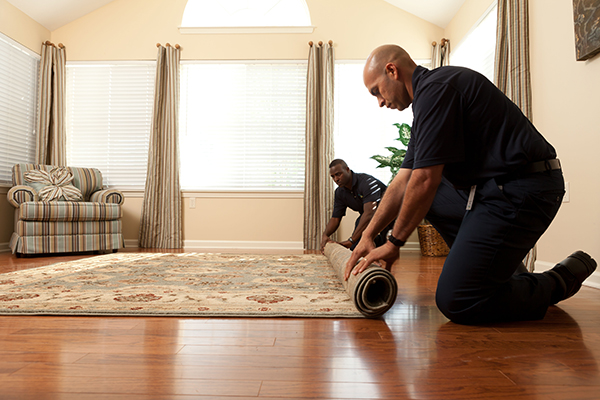 Carpet Cleaning Services for Newark, NJ and Essex County