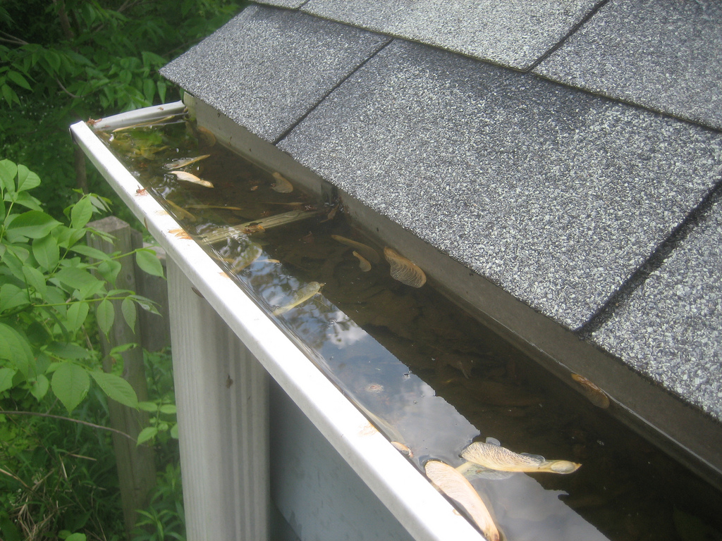 Cleaning-Gutters-ServiceMaster-by-Complete