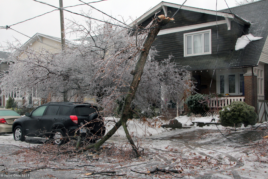 How To Protect Your Home From Storm Damage In New Jersey