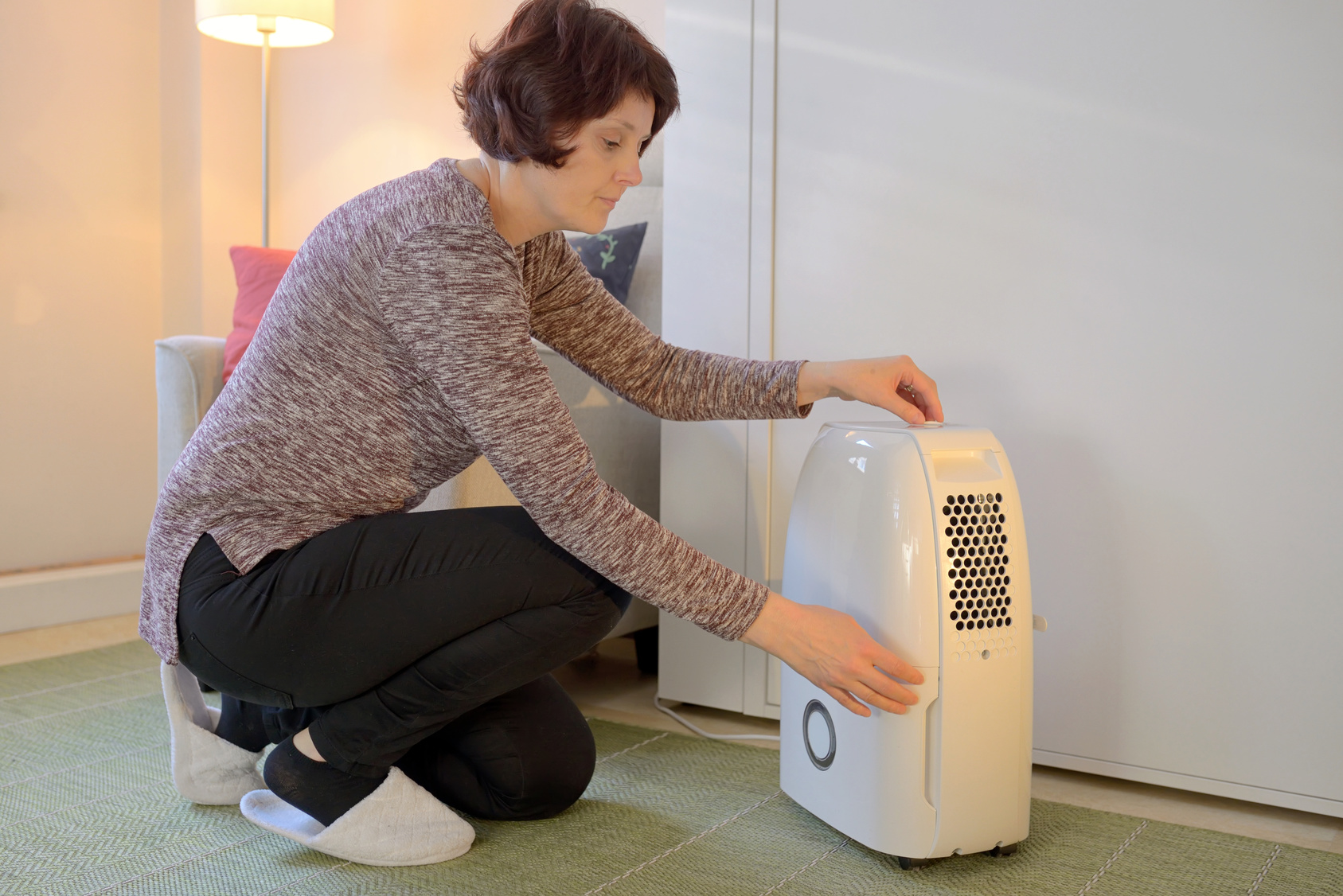 Dehumidifier-prevents-mold-new-york-new-jersey