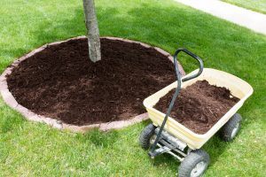 landscaping-tips-to-prevent-home-flooding-in-spring