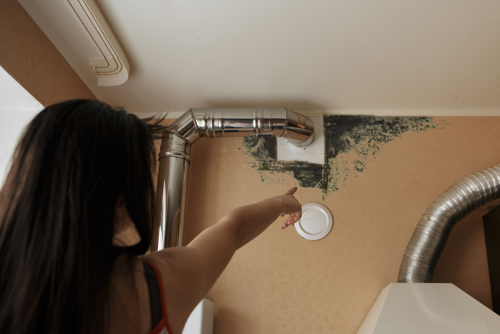 How Long Does It Take For Mold To Grow Servicemaster In