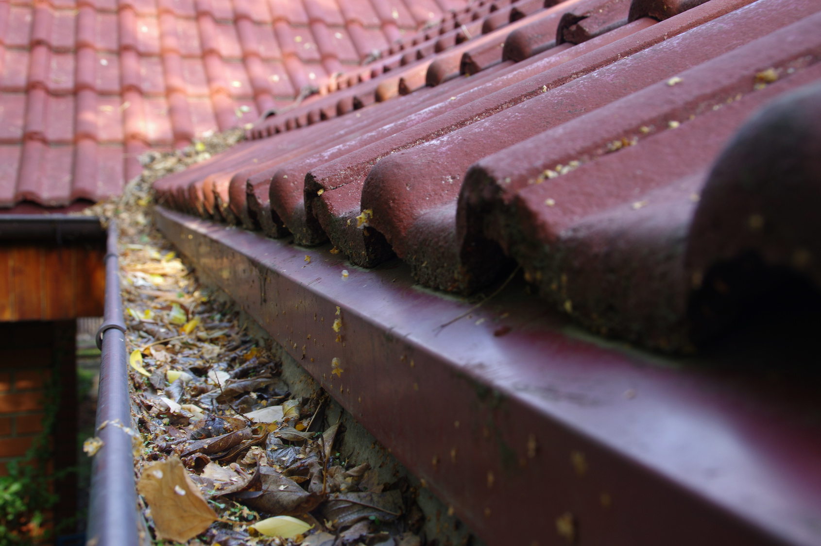 Fall Home Maintenance Tips In New Jersey